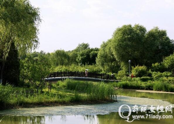 奥林匹克森林公园攻略,奥林匹克森林公园位于北京市朝阳区北五环林萃路,风景优美,每天都会迎来很多的游客,如果你也要去奥林匹克森林公园游玩,就和奇丽小编一起来看看奥林匹克森林公园攻略吧.  奥林匹克森林公园攻略 奥林匹克森林公园攻略 奥林匹克森林公园位于北京市朝阳区北五环林萃路,东至安立路,西至林萃路,北至清河,南至科荟路。